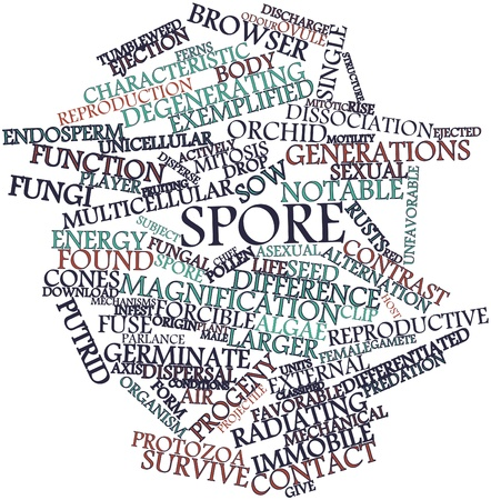 parlance: Abstract word cloud for Spore with related tags and terms