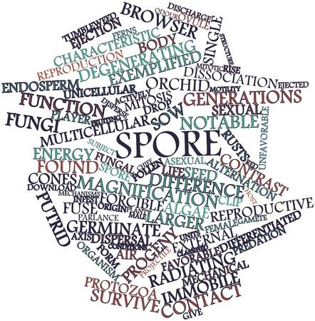 sporen: Abstraktes Wort-Wolke f�r Spore mit verwandten Tags und Begriffe Lizenzfreie Bilder