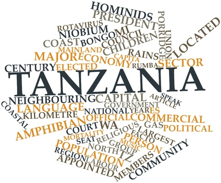 facto: Abstract word cloud for Tanzania with related tags and terms