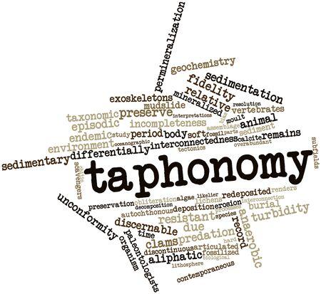 contemporaneous: Word cloud astratto per tafonomia con tag correlati e termini