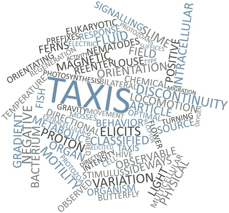 migrating cell: Abstract word cloud for Taxis with related tags and terms Stock Photo