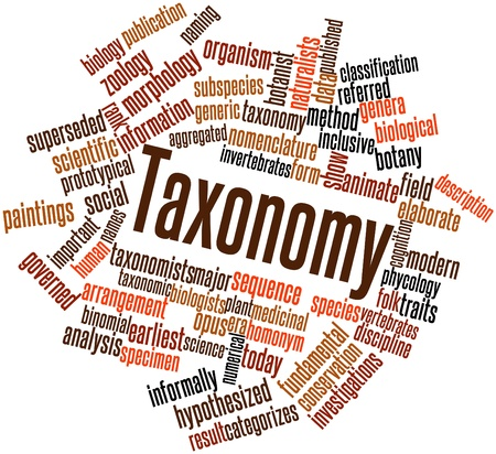 Abstract word cloud for Taxonomy with related tags and terms Stock Photo - 17029810