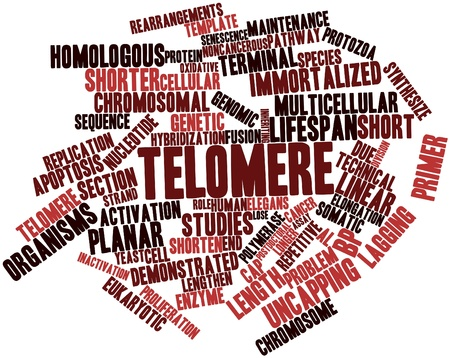 elongacion: Nube palabra abstracta para los telómeros con etiquetas y términos relacionados Foto de archivo