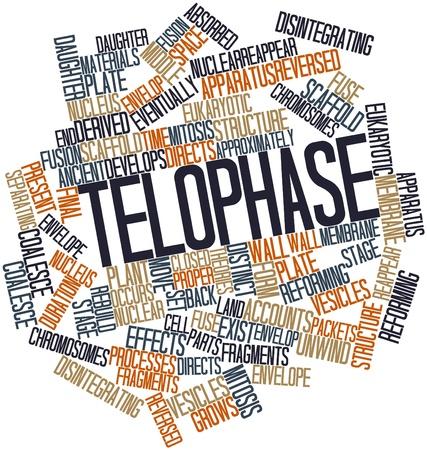 reforming: Nube palabra abstracta para Telofase con etiquetas y t�rminos relacionados