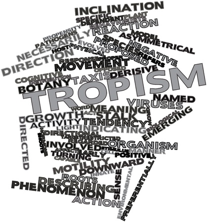Abstract word cloud for Tropism with related tags and terms Stock Photo - 17024223