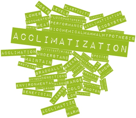acclimatization: Abstract word cloud for Acclimatization with related tags and terms Stock Photo