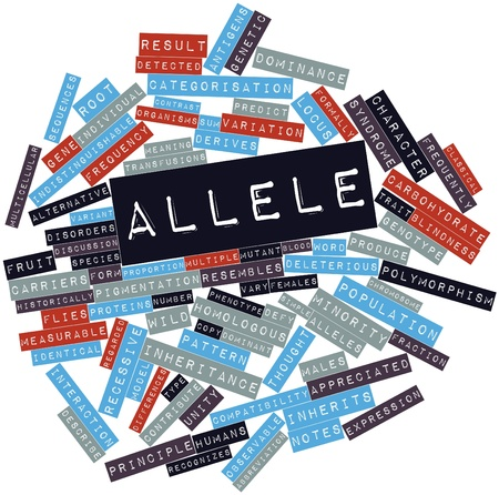 blood type: Abstract word cloud for Allele with related tags and terms