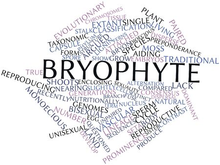 dioecious: Abstract word cloud for Bryophyte with related tags and terms