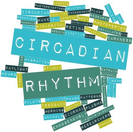 Abstrakt Wort-Wolke für Zirkadianen Rhythmus mit related tags und Begriffe Lizenzfreie Bilder