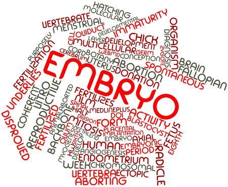 sixth form: Nube palabra abstracta para embriones con etiquetas y t�rminos relacionados