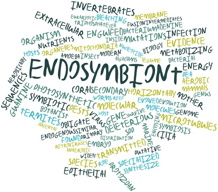 extracellular: Abstract word cloud for Endosymbiont with related tags and terms