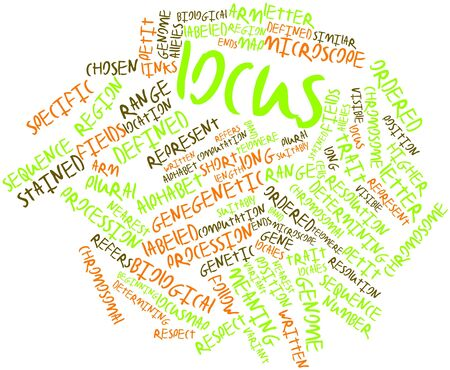 Abstract word cloud for Locus with related tags and terms Stock Photo - 17023933
