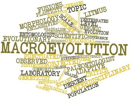 peculiarities: Abstract word cloud for Macroevolution with related tags and terms
