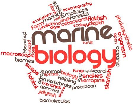 관련 태그와 조건에 해양 생물학에 대 한 추상적 인 단어 구름