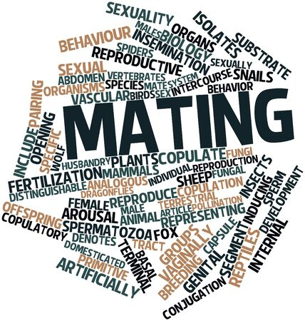 Abstract word cloud for Mating with related tags and terms Stock Photo - 17024464