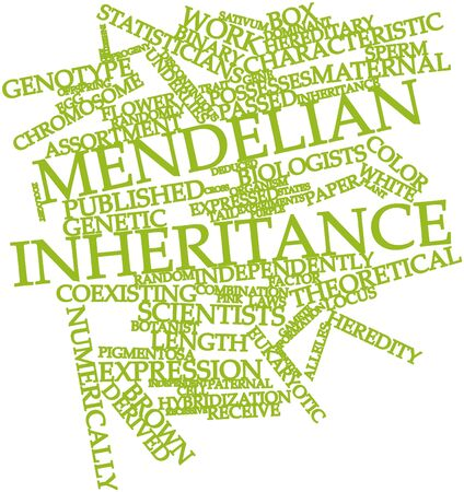discontinuous: Abstract word cloud for Mendelian inheritance with related tags and terms