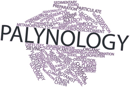 seasonality: Abstract word cloud for Palynology with related tags and terms