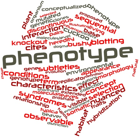 discontinuous: Abstract word cloud for Phenotype with related tags and terms