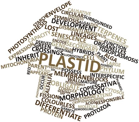 alfalfa: Abstract word cloud for Plastid with related tags and terms Stock Photo