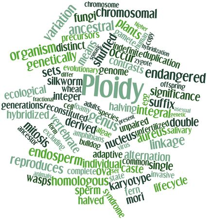 Abstract word cloud for Ploidy with related tags and terms Stock Photo