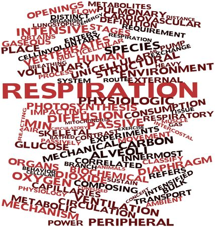 ml: Abstract word cloud for Respiration with related tags and terms Stock Photo