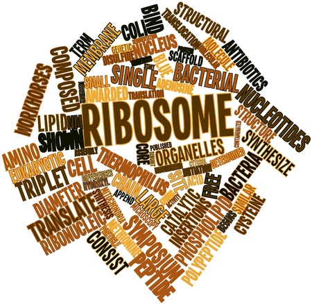 implicated: Abstract word cloud for Ribosome with related tags and terms