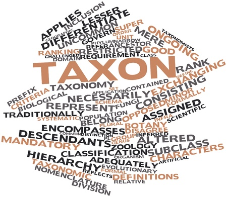 exact: Abstract word cloud for Taxon with related tags and terms Stock Photo