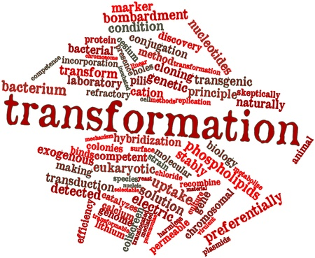 chromosomal: Abstract word cloud for Transformation with related tags and terms Stock Photo