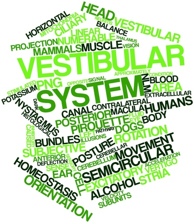 Abstract word cloud for Vestibular system with related tags and terms Stock Photo