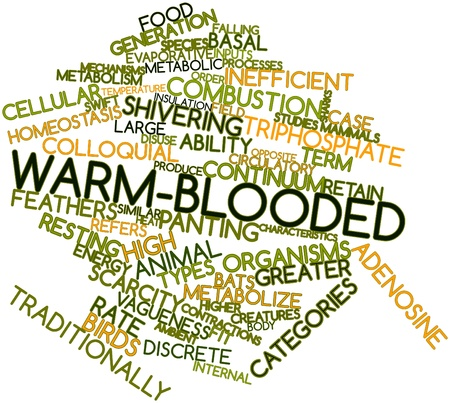 triphosphate: Abstract word cloud for Warm-blooded with related tags and terms Stock Photo