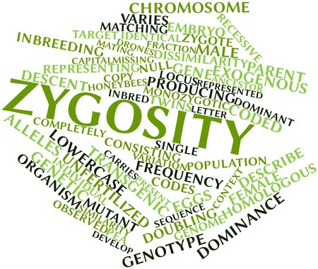 Abstract word cloud for Zygosity with related tags and terms Stock Photo
