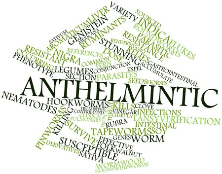 flukes: Abstract word cloud for Anthelmintic with related tags and terms