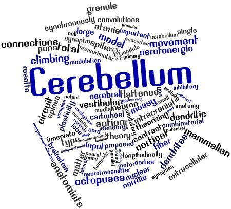 synchronously: Abstract word cloud for Cerebellum with related tags and terms
