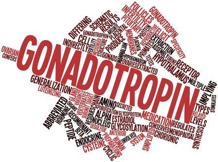 recombinant: Word cloud astratto per gonadotropina con tag correlati e termini Archivio Fotografico