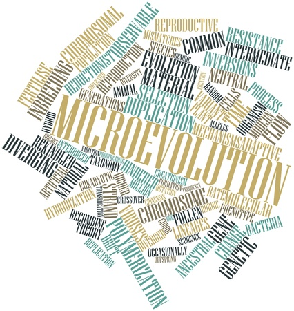 Abstract word cloud for Microevolution with related tags and terms Stock Photo - 17149640