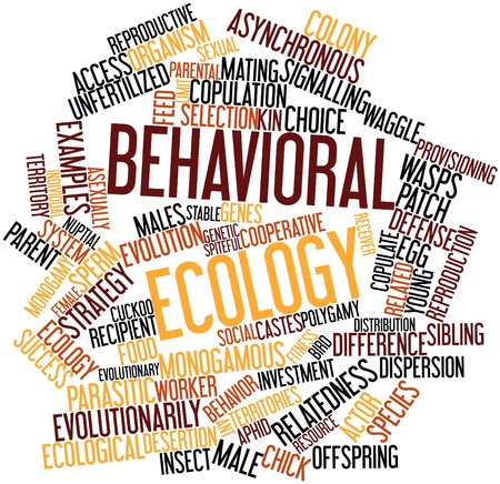behavioral: Abstract word cloud for Behavioral ecology with related tags and terms Stock Photo