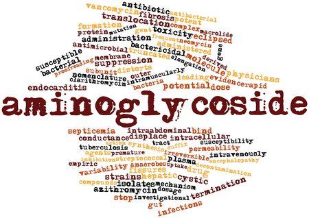 elongacion: Nube palabra abstracta para aminoglucósido con etiquetas y términos relacionados