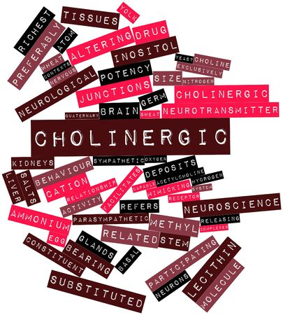 methyl: Abstract word cloud for Cholinergic with related tags and terms Stock Photo