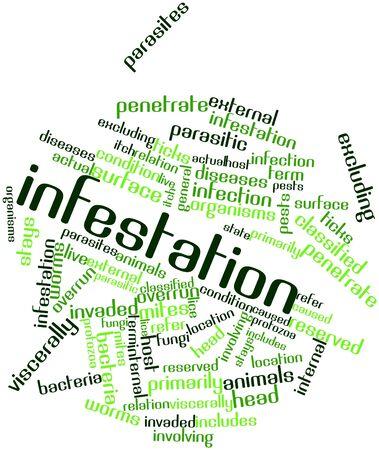 piojos: Nube de palabras Resumen de infestación con etiquetas y términos relacionados
