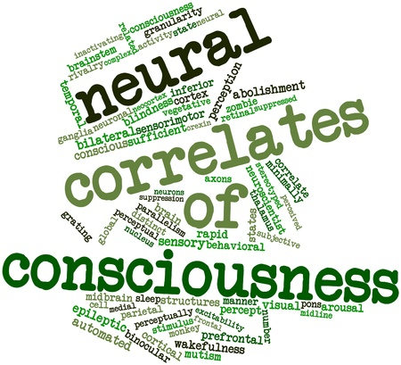 correlate: Abstract word cloud for Neural correlates of consciousness with related tags and terms Stock Photo