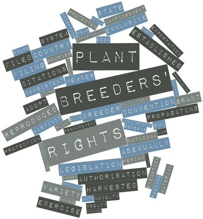 Abstract word cloud for Plant breeders rights with related tags and terms Zdjęcie Seryjne