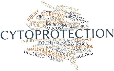 ulceras: Nube palabra abstracta para Citoprotecci�n con etiquetas y t�rminos relacionados