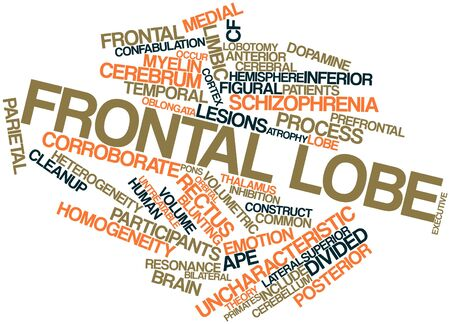 Abstract word cloud for Frontal lobe with related tags and terms Stock Photo