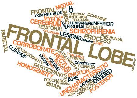 l�bulo: Nube palabra abstracta para l�bulo frontal con las etiquetas y t�rminos relacionados