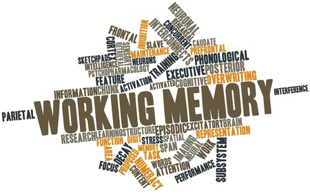 Abstract word cloud for Working memory with related tags and terms Stock Photo - 17319414