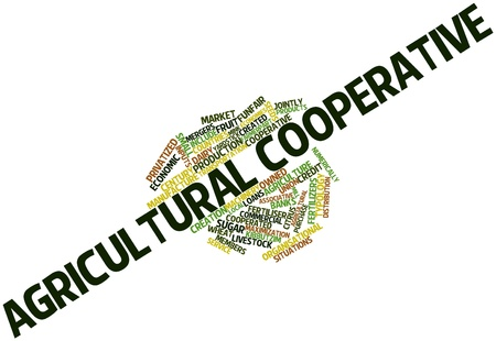cooperativa: Nube palabra abstracta por Cooperativa agr�cola con las etiquetas y t�rminos relacionados Foto de archivo