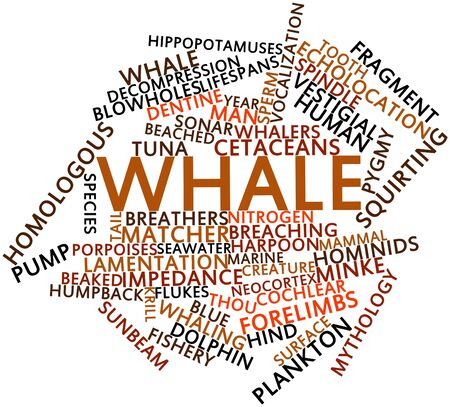 homologous: Abstract word cloud for Whale with related tags and terms