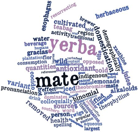 Abstract word cloud for Yerba mate with related tags and terms Stock Photo - 17398255
