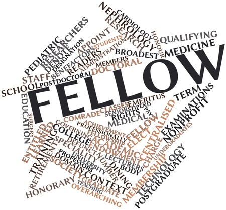fellows: Abstract word cloud for Fellow with related tags and terms