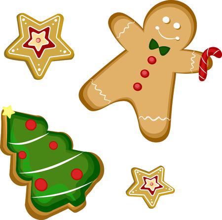 ginger: ginger cookies vector illustration